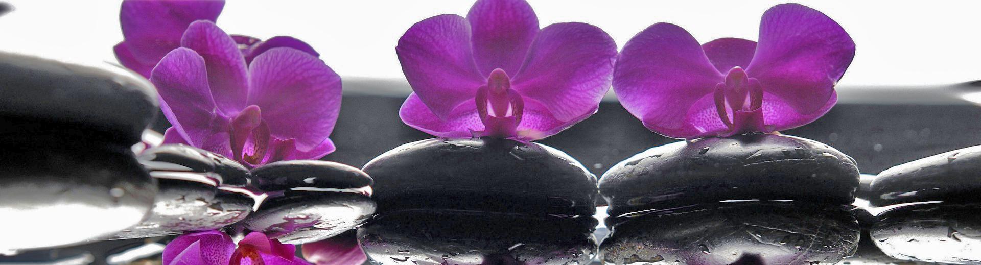 flores-spa